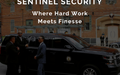 Episode 11 : Sentinel Security Podcast
