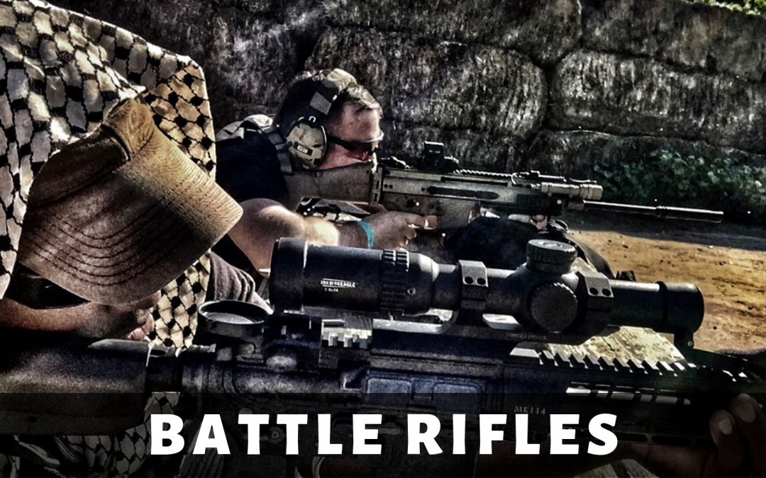 Battle Rifles (PWS & Surefire) Review