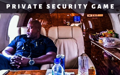 Private Security Game